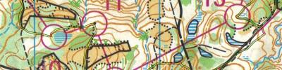 Z666 - Polish Night Orienteering Championships (2019-05-18)